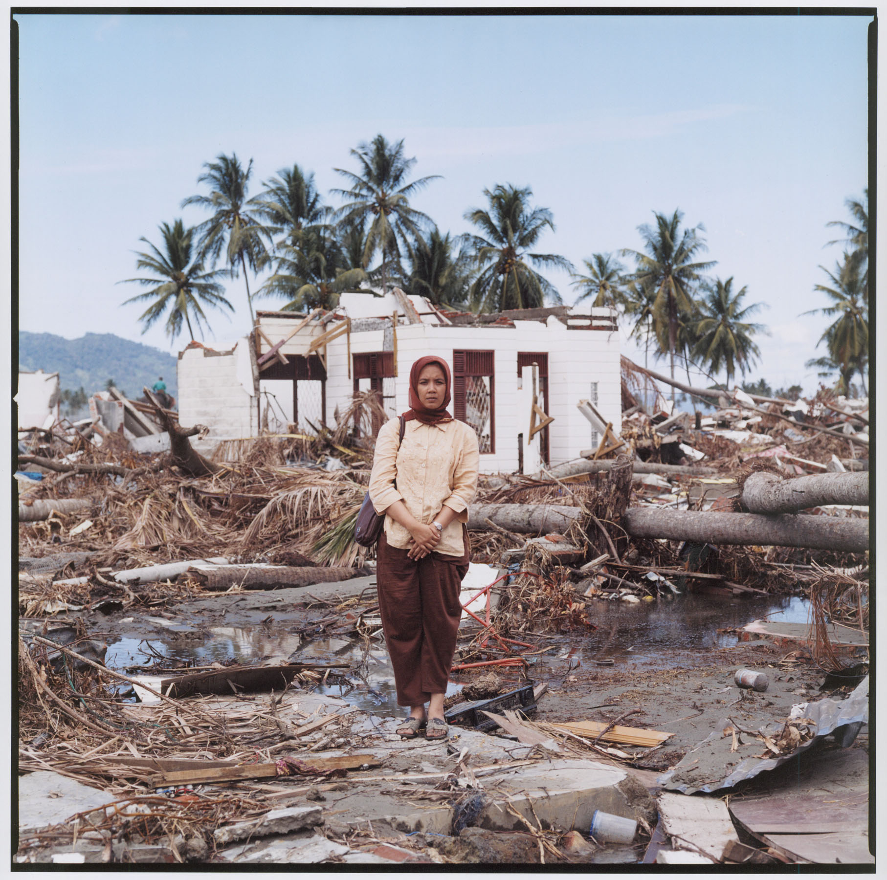 indian ocean tsunami essay